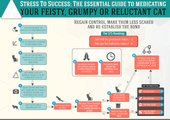 Stress To Success